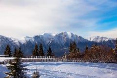 Bucegi gór krajobraz w zimie Zdjęcia Royalty Free