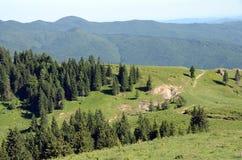 Bucegi góra zdjęcia royalty free