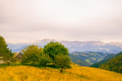 Bucegi góry Obrazy Stock