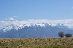 Bucegi góry w wiosna czasie Bucegi góry krajobraz w zima sezonie z śnieżnym nakryciem drzewa i góry w R Obrazy Stock