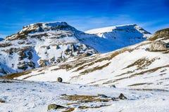 Bucegi, Karpackie góry, Rumunia Zdjęcia Royalty Free