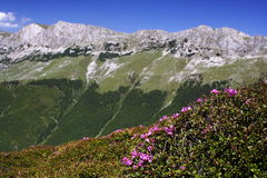 Bucegi mountains. West side of the Bucegi mountains - Romanian Carpathians stock image