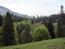 Bucegi Mountains, Romania Stock Images