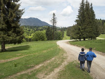 Bucegi Mountains, Romania Royalty Free Stock Photos