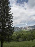 Bucegi Mountains, Romania Royalty Free Stock Photo