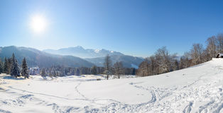 Bucegi mountains from Trei Brazi. Panorama of the Bucegi mountains as seen from Trei Brazi area during a sunny winter day royalty free stock images