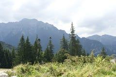 Bucegi mountains Royalty Free Stock Photos