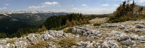Bucegi panorama 1 Royaltyfri Bild