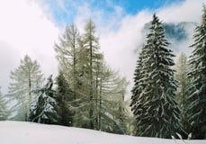 Bucegi Postcard. Shot taken in Bucegi, Romania, Europe Stock Photography