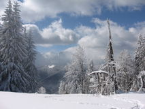 Bucegi  - Predeal 1. A trip on the romanian mountains Stock Images