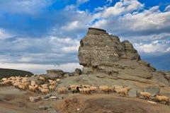 The Bucegi Sphinx , Romania Royalty Free Stock Photo