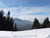 Bucegi. Trails on the snow on Baiului mountains Royalty Free Stock Images