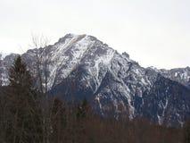 Bucegibergen - Roemenië Royalty-vrije Stock Foto's