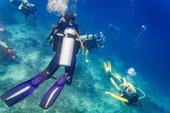 Buceo con escafandra de los buceadores que mira la tortuga y pescados de mar debajo del agua Fotografía de archivo