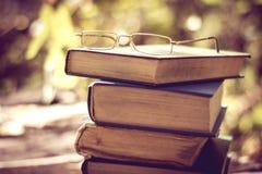 Buch auf der Natur Stockfoto