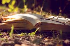 Buch auf der Natur Stockfotos