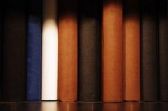 Buch auf Regal Stockfotografie