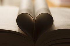 Buch der Liebe Stockfotos