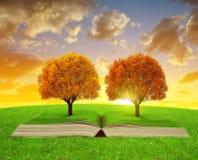 Buch der Natur mit bunten Herbstbäumen Stockfotos