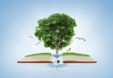 Buch der Natur mit Gras- und Baumwachstum auf ihm über weißem Blau Stockfotos