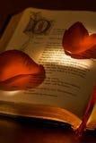 Buch des Valentinsgrußes Lizenzfreies Stockbild