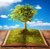 Buch des Wissens Lizenzfreie Stockbilder