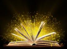 Buch. Geöffnetes Buch mit spezieller Leuchte. stockfotografie