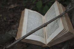 Buch geht zu seinen Wurzeln zurück stockbilder