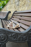 Buch gelassen auf einer Parkbank (vertikale Form) Stockfoto
