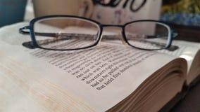 Buch las Buchleser-Buchwurm-Glaslesebrille stockfotos