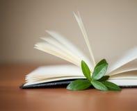 Buch mit Blättern auf dem Tisch und weißem Hintergrund Lizenzfreie Stockfotos
