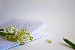 Buch mit Blumen Stockfoto