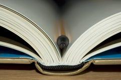Buch mit Feder lizenzfreies stockbild