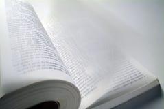 Buch mit Flugwesenseiten Lizenzfreie Stockfotografie