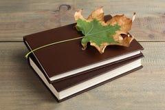 Buch mit Herbstlaub Stockfotos
