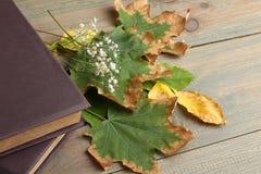 Buch mit Herbstlaub Lizenzfreies Stockbild