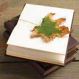 Buch mit Herbstlaub Lizenzfreies Stockfoto