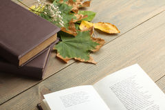 Buch mit Herbstlaub Stockfotografie