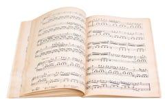 Buch mit Musikkerben Lizenzfreie Stockfotos