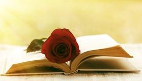 Buch mit stieg Lizenzfreies Stockbild