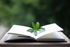 Buch oder Notizbuch mit Blättern auf neture Hintergrund Stockfotos