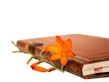 Buch und Blume Stockfotos