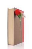 Buch und eine Rose Stockfoto