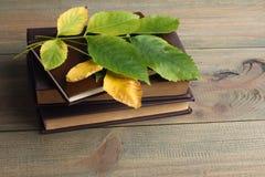 Buch- und Grünblätter Stockfoto