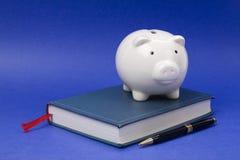 Buch und Piggy Querneigung Lizenzfreies Stockfoto