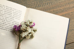 Buch und Trockenblumen Lizenzfreie Stockfotos