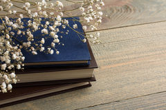 Buch und Trockenblumen Lizenzfreie Stockfotografie