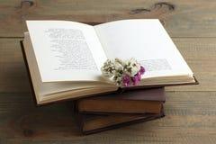 Buch und Trockenblumen Lizenzfreies Stockfoto