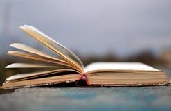 Buch von Poesie draußen Lizenzfreies Stockbild