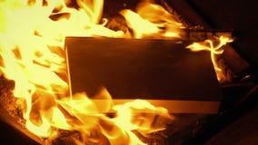 Buch wird in Feuer geworfen stock video footage